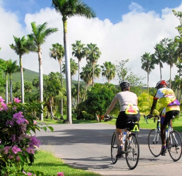 Bicycle Tours - Island Discovery