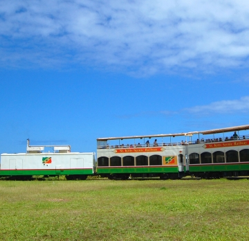 St. Kitts Scenic Train